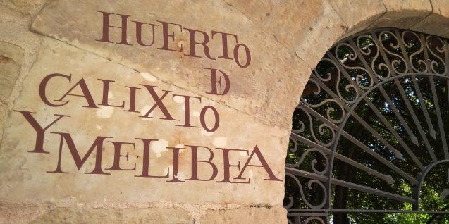 Salamanca, segundo día
